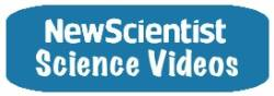 New Scientist TV offers videos that report, explore and interpret the results of human endeavour set in the context of society and culture.